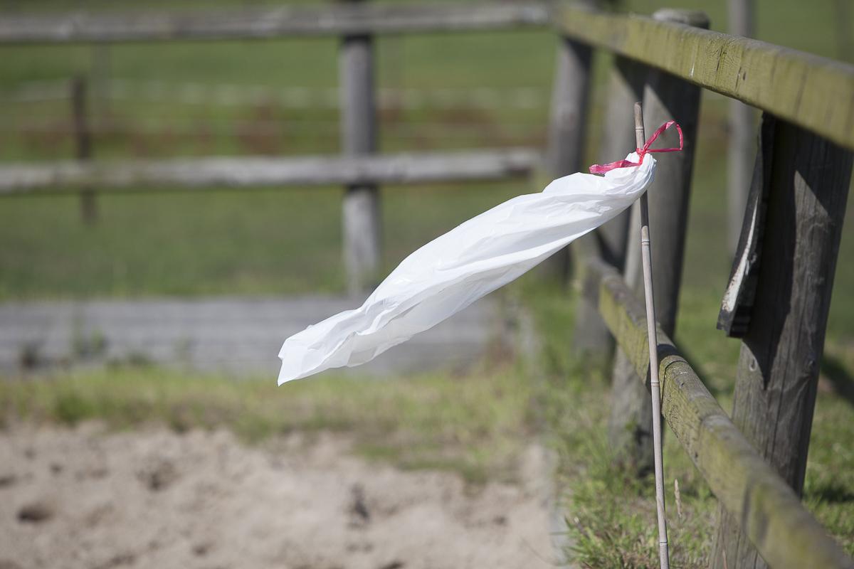 Je kunt zelf een eng voorwerp maken, bijvoorbeeld een plastic zak aan een stokje.