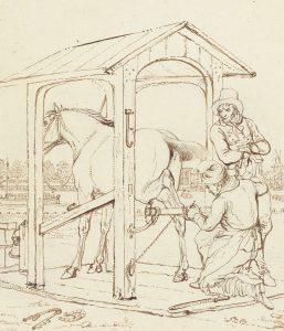 Zeker bij jonge paarden, die hun balans nog niet goed hebben, kan een hoefsmid of bekapper vervelend overkomen. Soms verliest een hoefsmid ook wel eens zijn geduld. De hoefsmid is klassiek geconditioneerd.