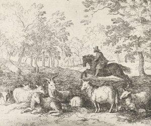 Als je je paard onder aan een heuvel naar boven laat galopperen, zal hij na een aantal keer zelf aanspringen. De voet van de heuvel is klassiek geconditioneerd.